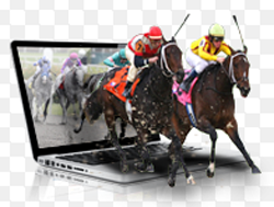 Online Racebooks